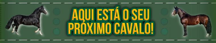 https://cosasdelcampo.com.br/oportunidades